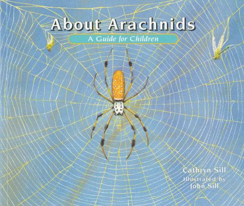 About Arachnids