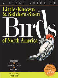 Field Guide to Little Known & Seldom Seen Birds of North America