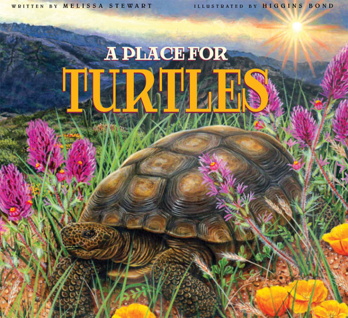 A Place for Turtles