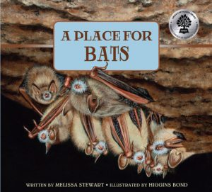 A Place for Bats