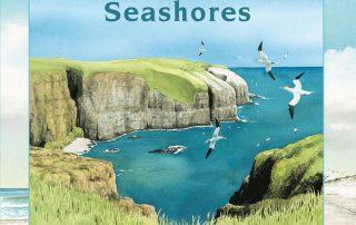About Habitats Seashores