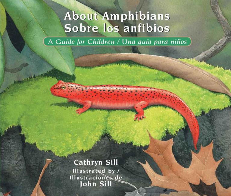 Abou tAmphibians Sobre los anfibios