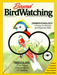 Beyond Birdwatching