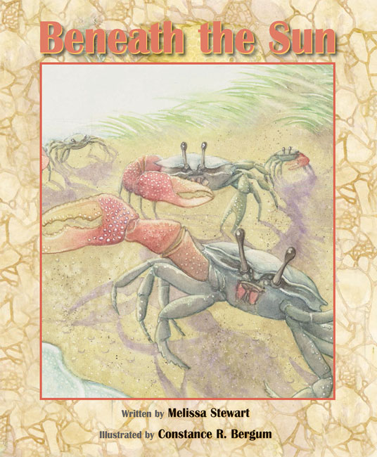 Beneath the Sun HC