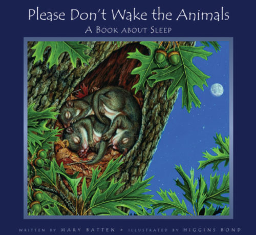 Please Dont Wake the Animals
