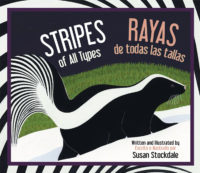 Stripes of All Types Rayas de Todas las Tallas