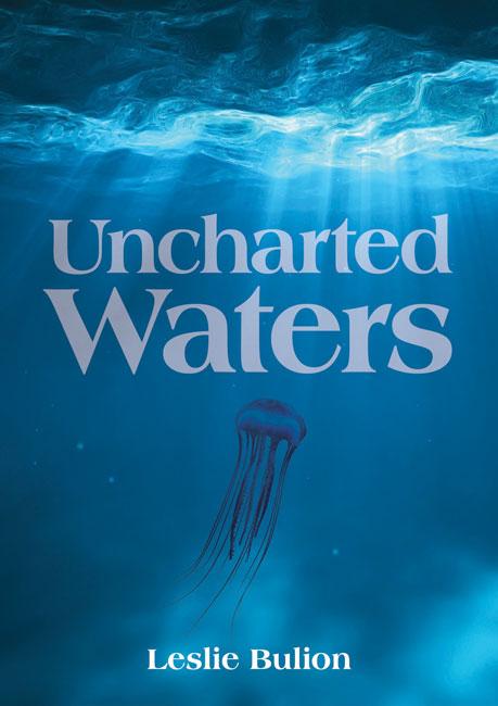 Uncharted Waters PB