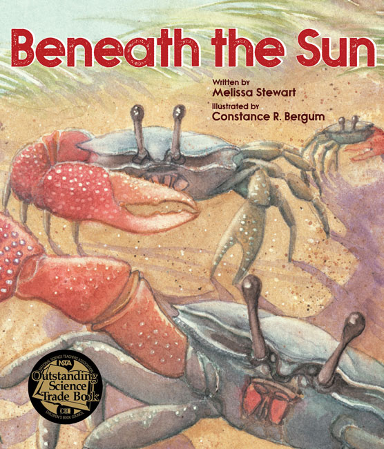 Beneath the Sun PB
