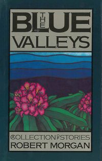 The Blue Valleys