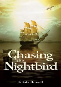 Chasing the Nightbird