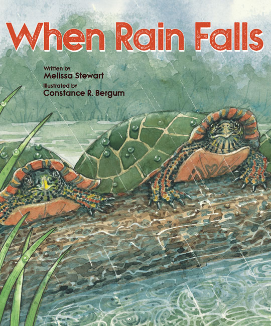 When Rain Falls PB