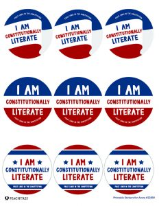 Fault Lines in the Constitution Stickers
