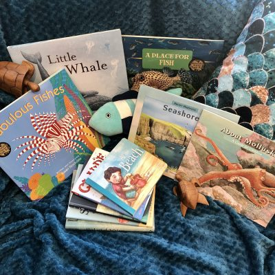 Ocean Beach Books for Summer