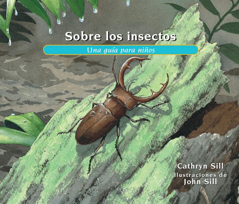 Sobre los insectos