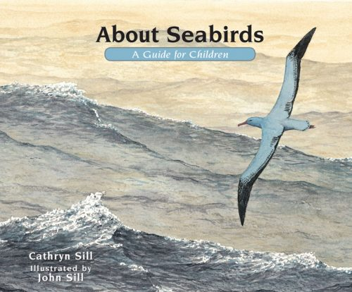 About Seabirds