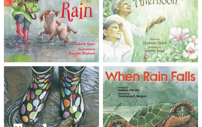 Rainy Day Books