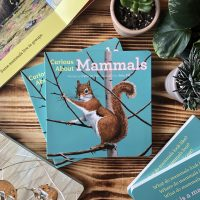 Curious About Mammals New Book