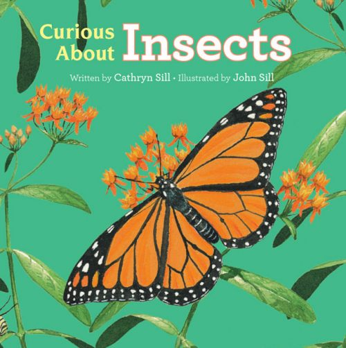 Curious About Insects