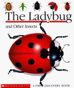 TheLadyBug