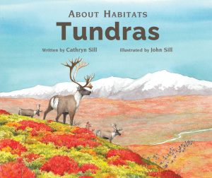 About Habitats Tundras